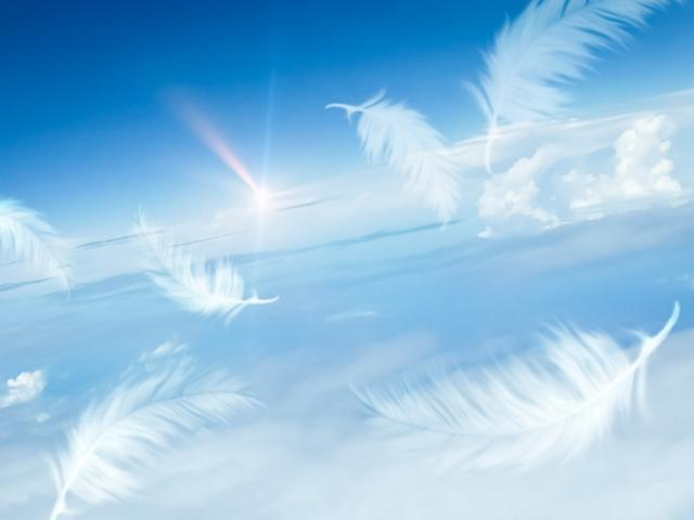 大空を羽ばたく